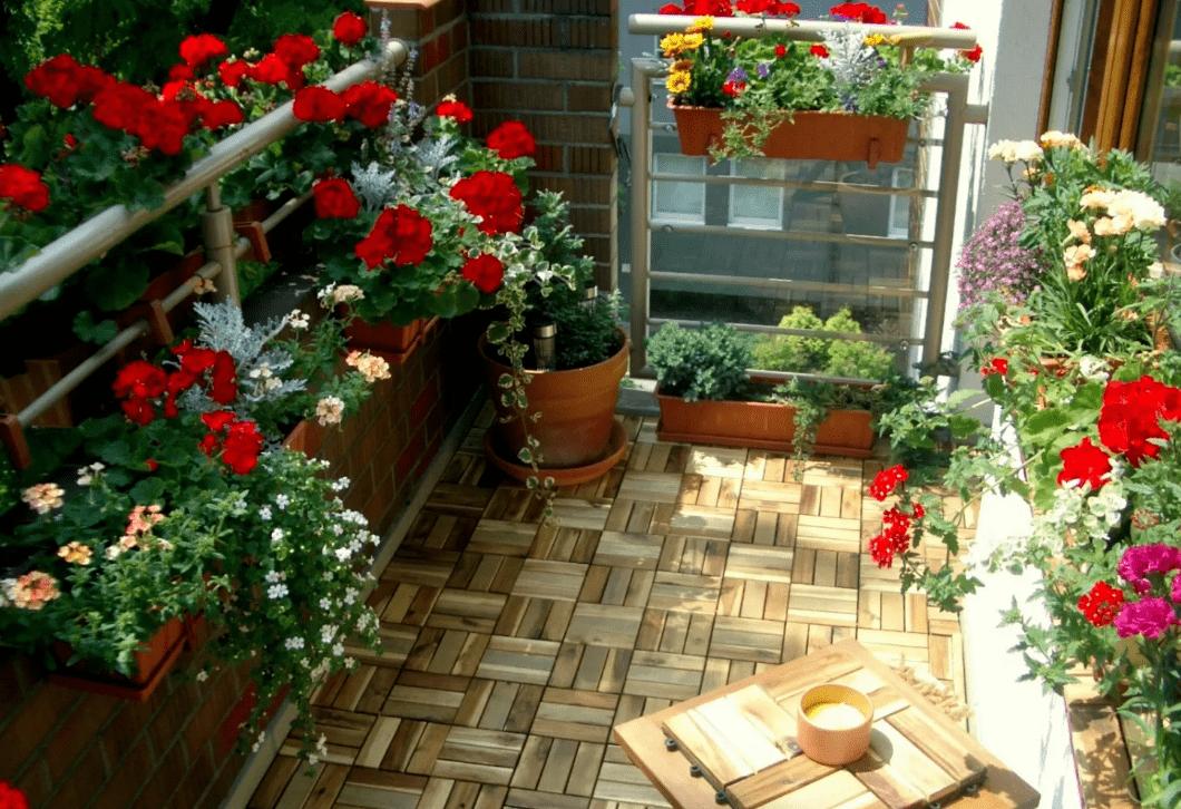 Цветы на балконе, которые можно посадить летом, на солнечной стороне, в ящиках